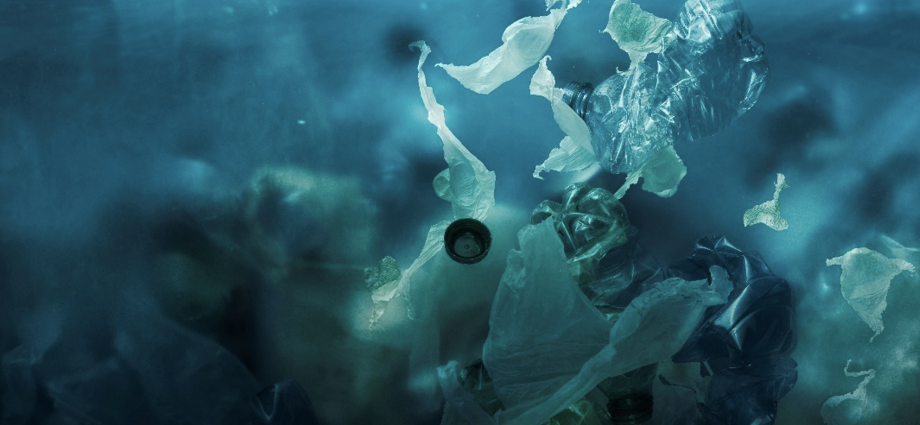 In 2050 there will be more plastic in the sea than fish