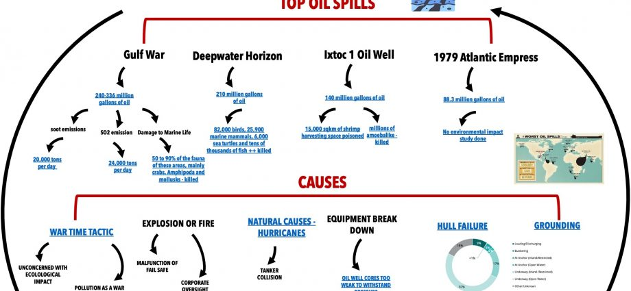 The Impact of Oil Spills on Our Oceans
